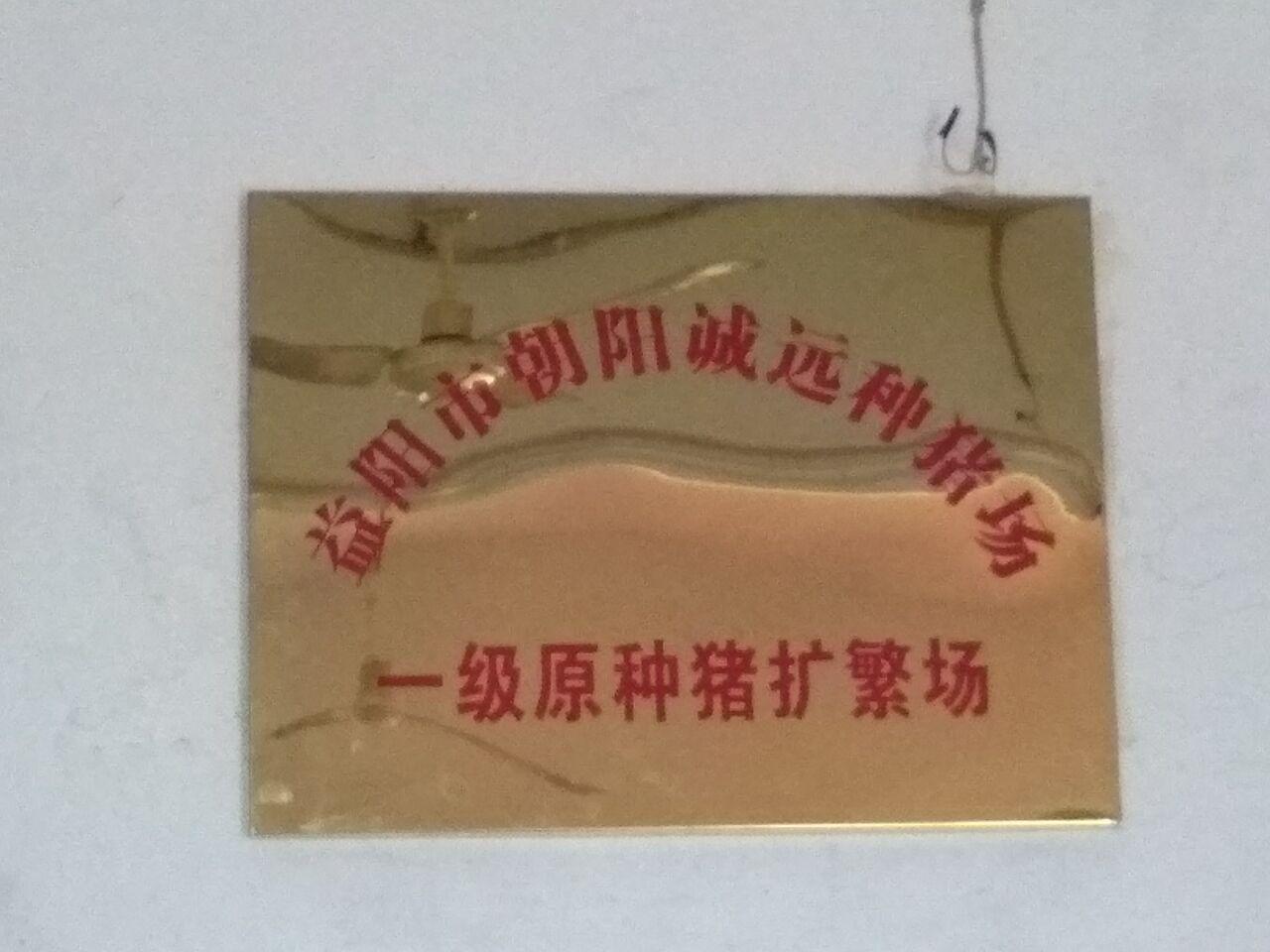 湖南省益阳市资阳区诚远种猪场
